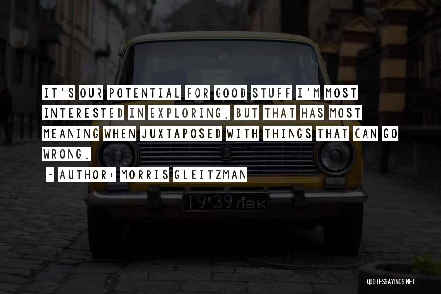 Stuff Going Wrong Quotes By Morris Gleitzman