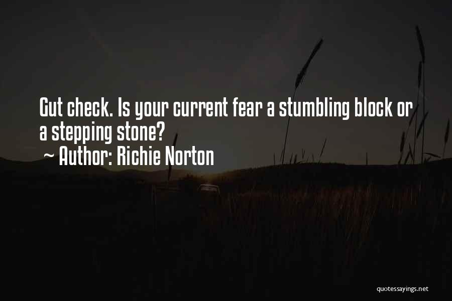 Stumbling Block Stepping Stone Quotes By Richie Norton