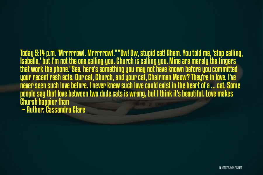 Stupid And Funny Quotes By Cassandra Clare