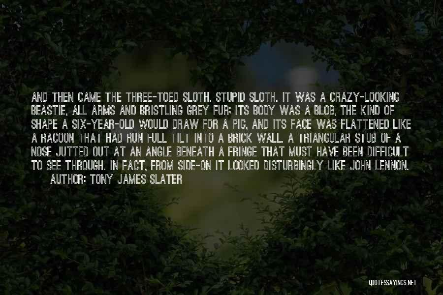 Stupid And Funny Quotes By Tony James Slater