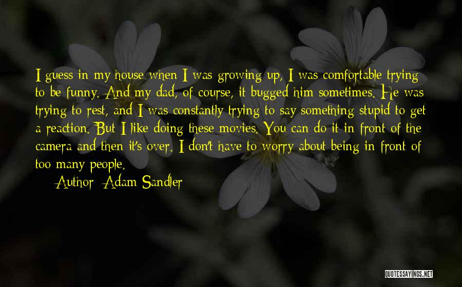 Stupid But Funny Quotes By Adam Sandler