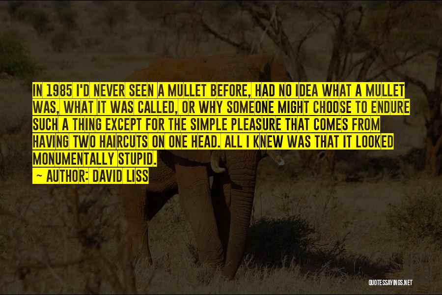 Stupid Simple Quotes By David Liss