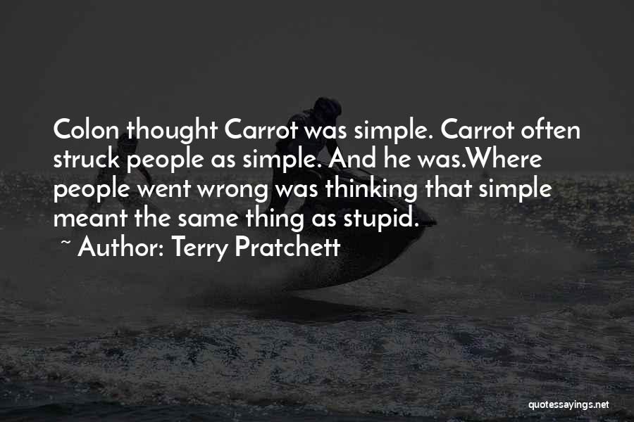 Stupid Simple Quotes By Terry Pratchett