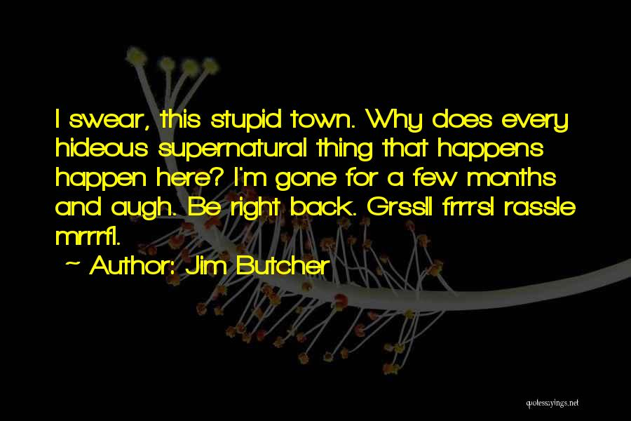 Stupid Things Happen Quotes By Jim Butcher
