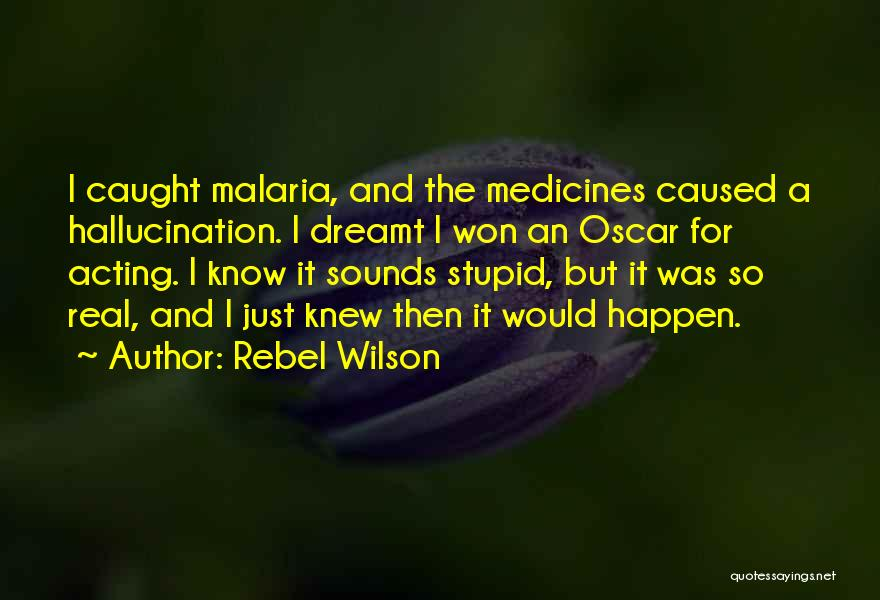 Stupid Things Happen Quotes By Rebel Wilson