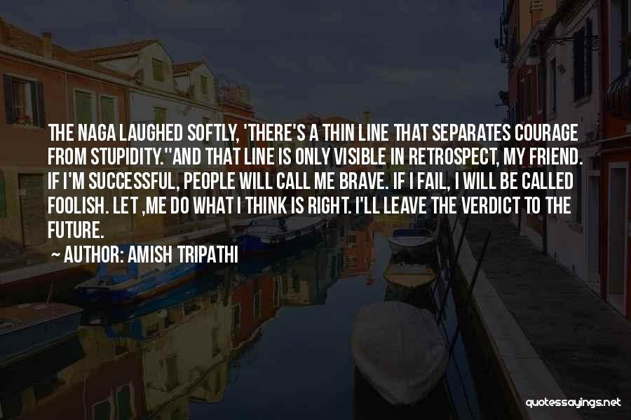 Stupidity And Courage Quotes By Amish Tripathi