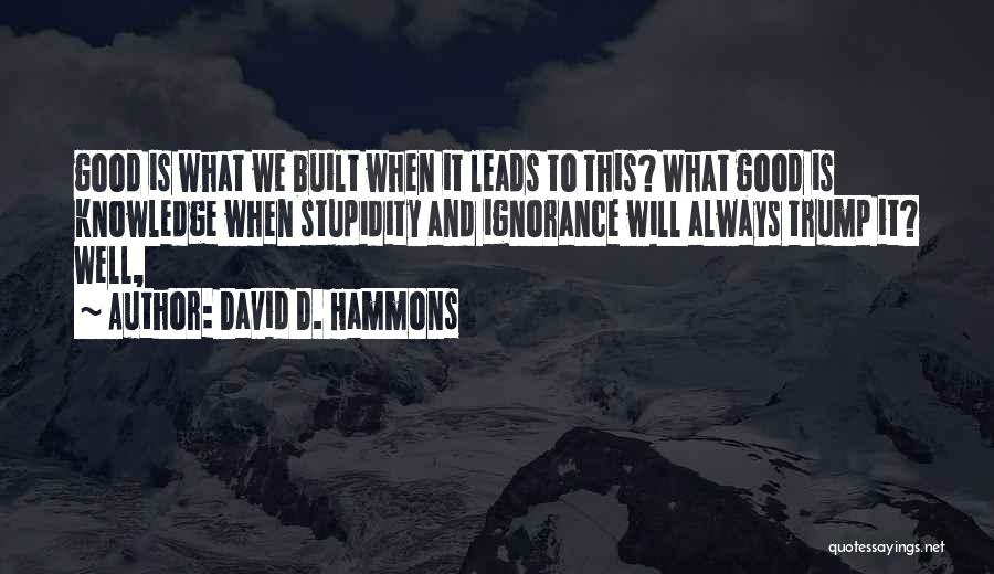 Stupidity And Ignorance Quotes By David D. Hammons