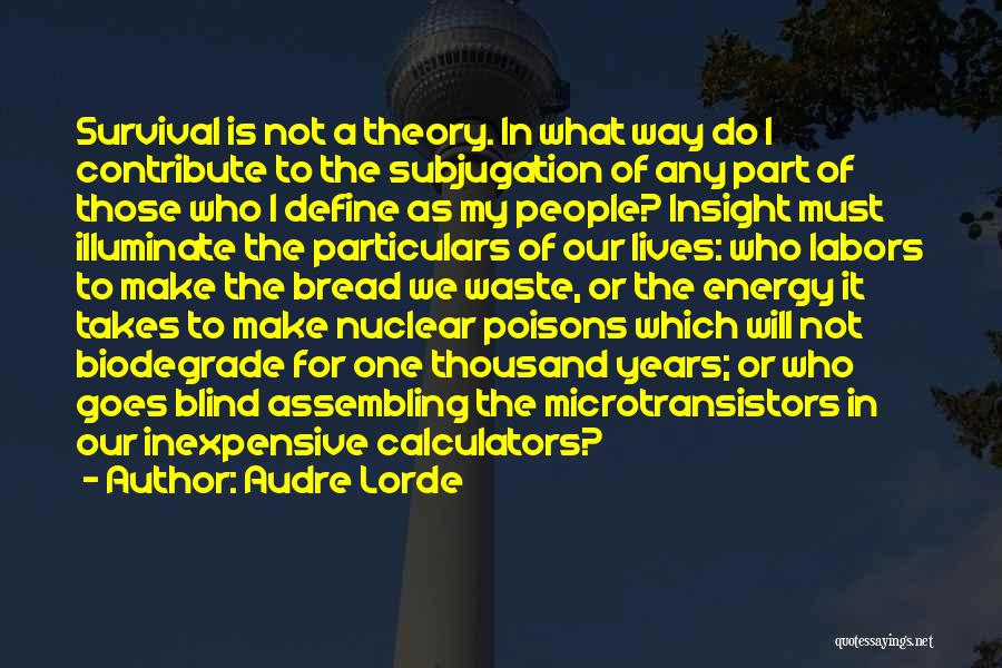 Subjugation Quotes By Audre Lorde