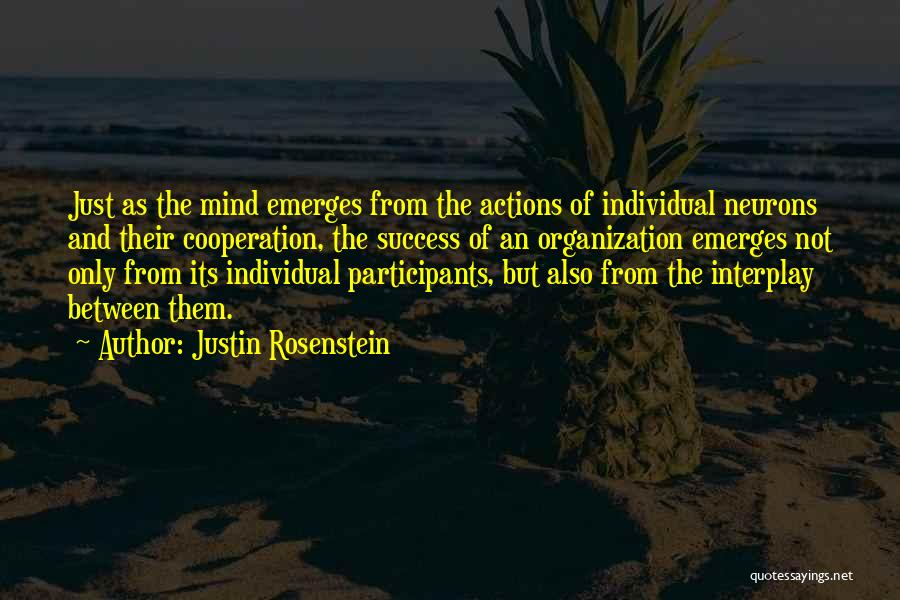 Success And Cooperation Quotes By Justin Rosenstein