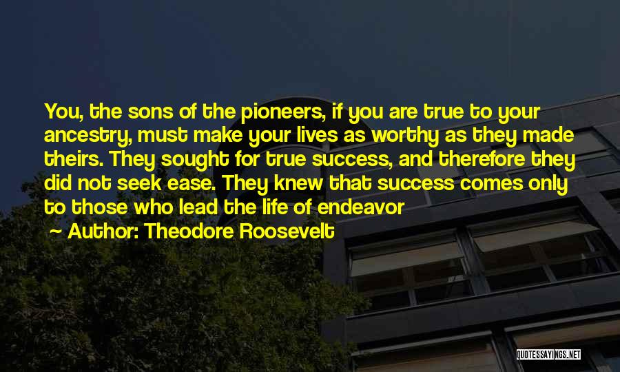 Success Comes Quotes By Theodore Roosevelt
