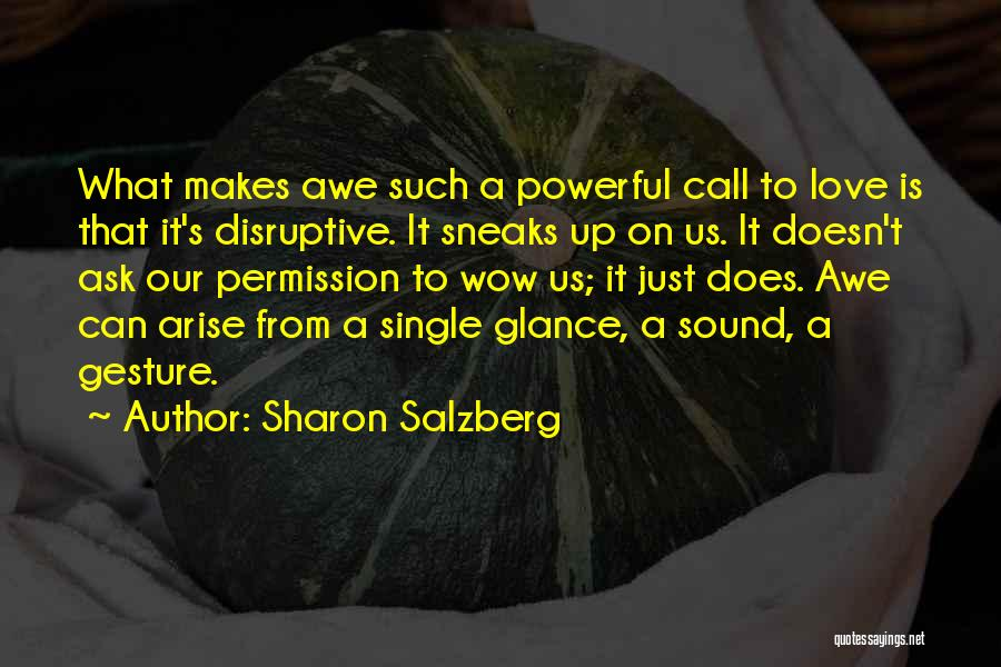 Such Wow Quotes By Sharon Salzberg