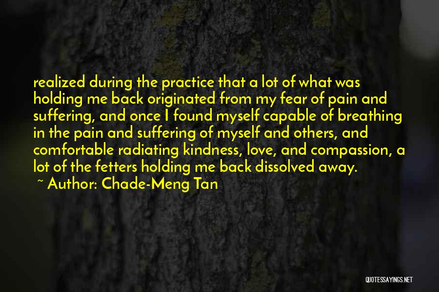 Suffering And Compassion Quotes By Chade-Meng Tan