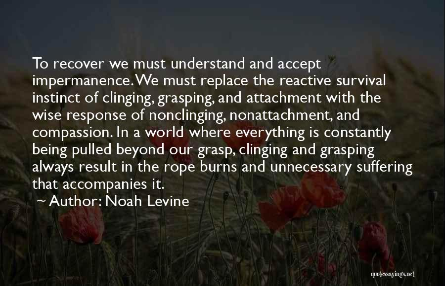 Suffering And Compassion Quotes By Noah Levine