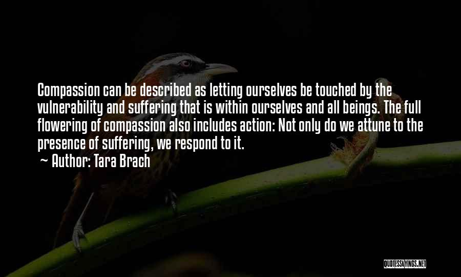 Suffering And Compassion Quotes By Tara Brach