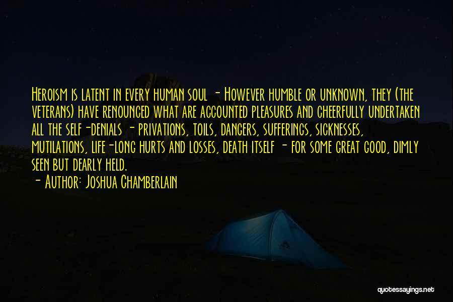 Sufferings In Life Quotes By Joshua Chamberlain