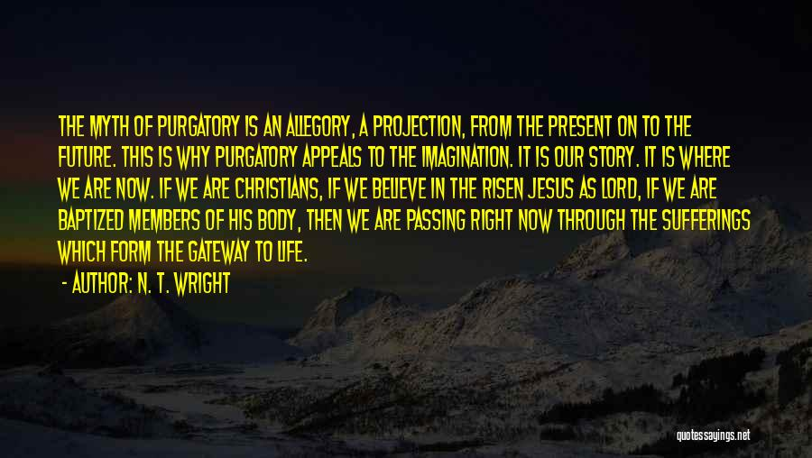 Sufferings In Life Quotes By N. T. Wright