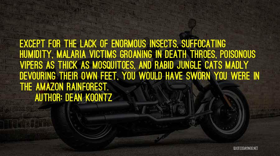 Suffocating Quotes By Dean Koontz