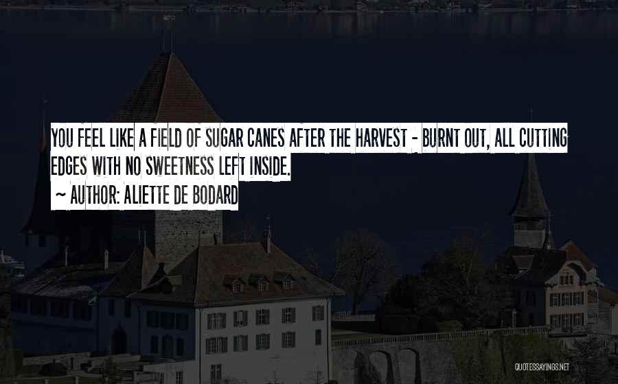 Sugar Quotes By Aliette De Bodard