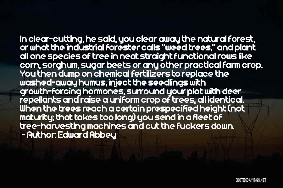 Sugar Quotes By Edward Abbey