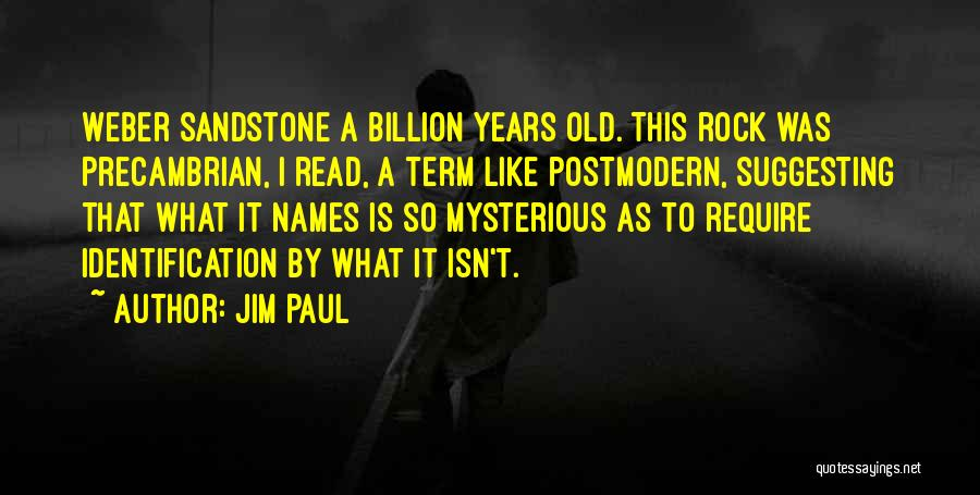 Suggesting Quotes By Jim Paul
