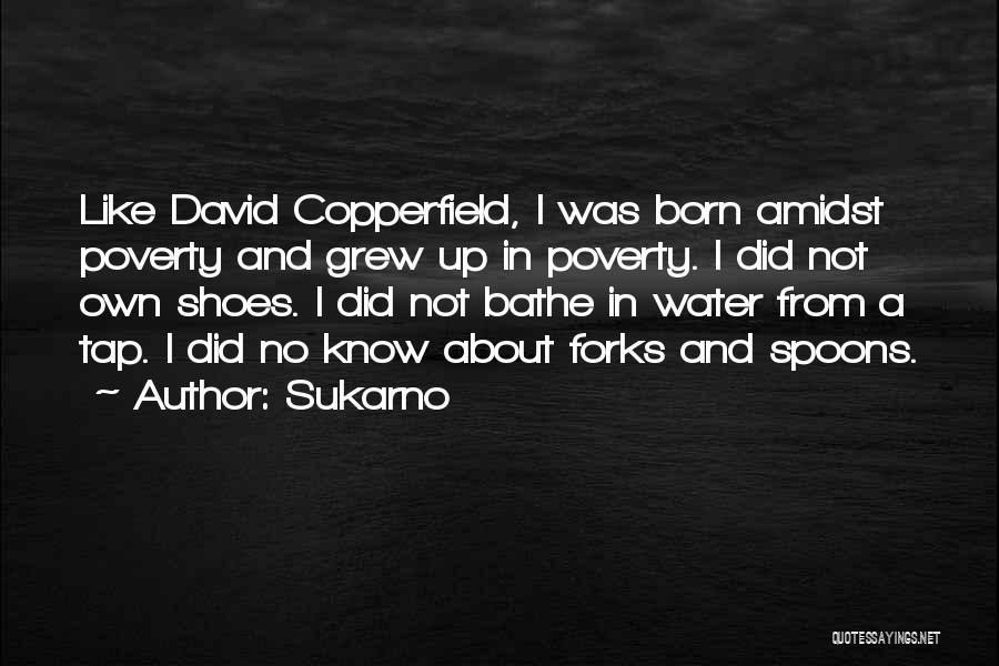 Sukarno Quotes 1368435
