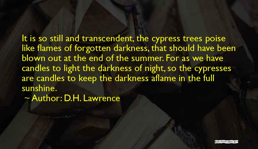 Summer And Sunshine Quotes By D.H. Lawrence