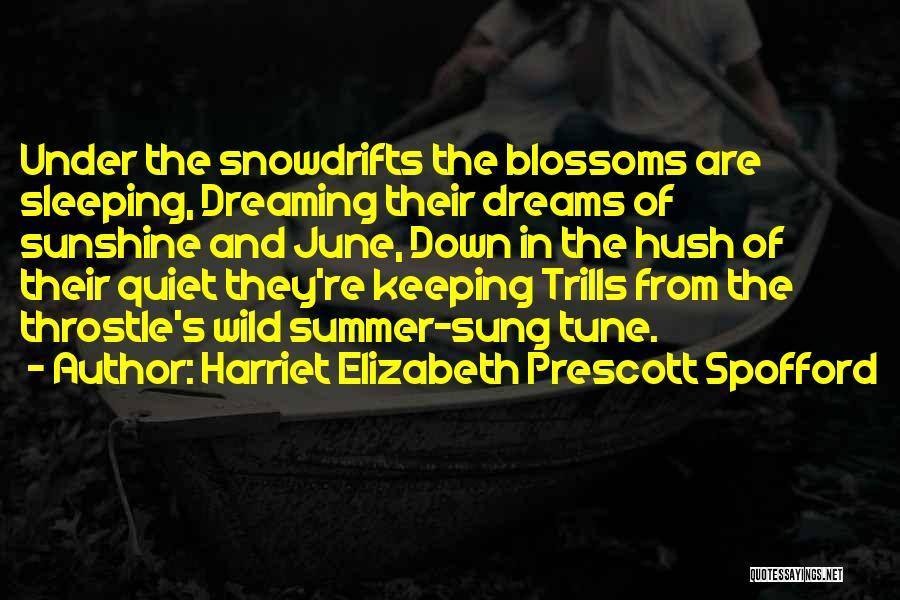Summer And Sunshine Quotes By Harriet Elizabeth Prescott Spofford