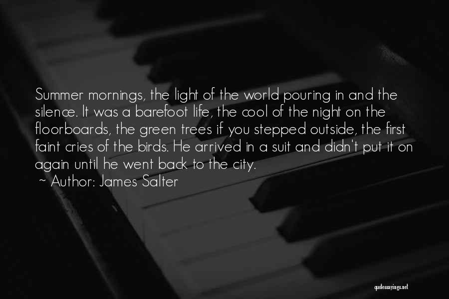 Summer Arrived Quotes By James Salter