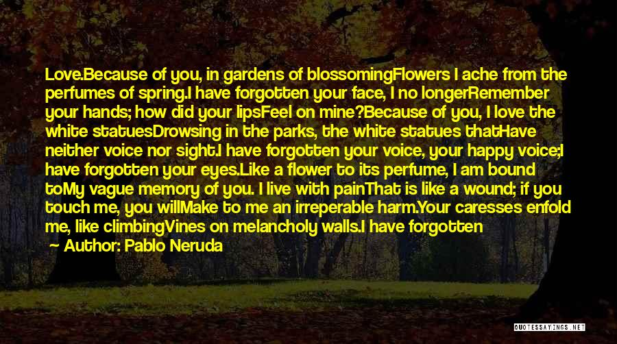 Summer With Your Love Quotes By Pablo Neruda