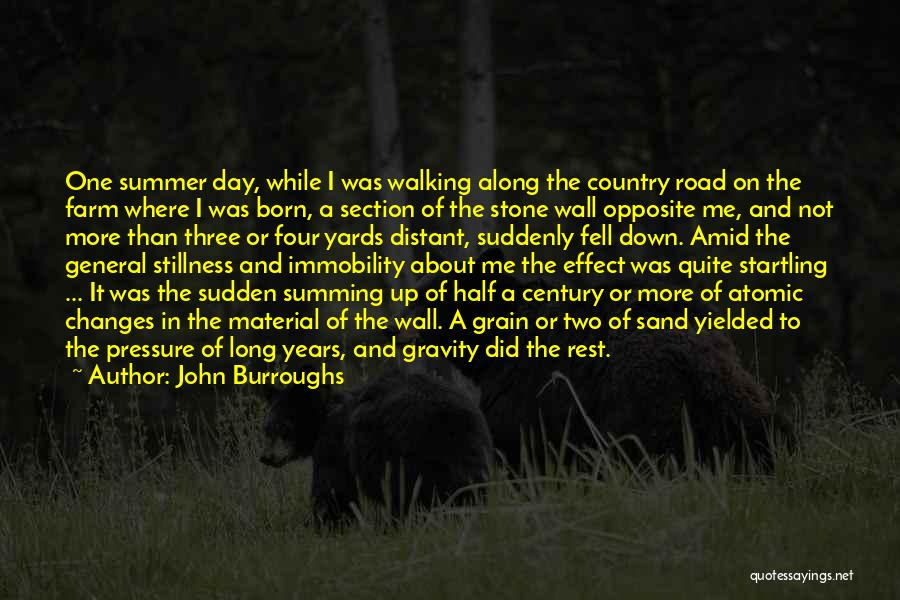Summing Up Quotes By John Burroughs