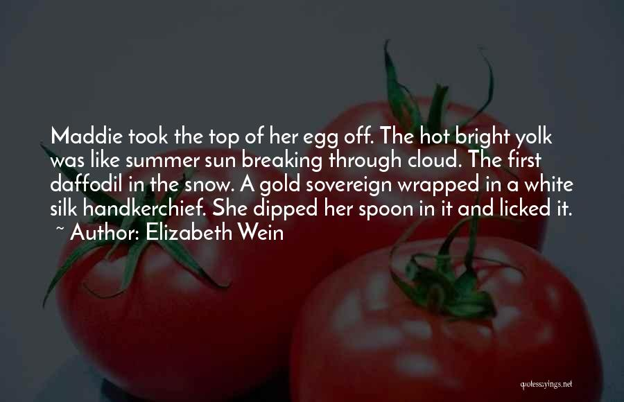 Sun Cloud Quotes By Elizabeth Wein