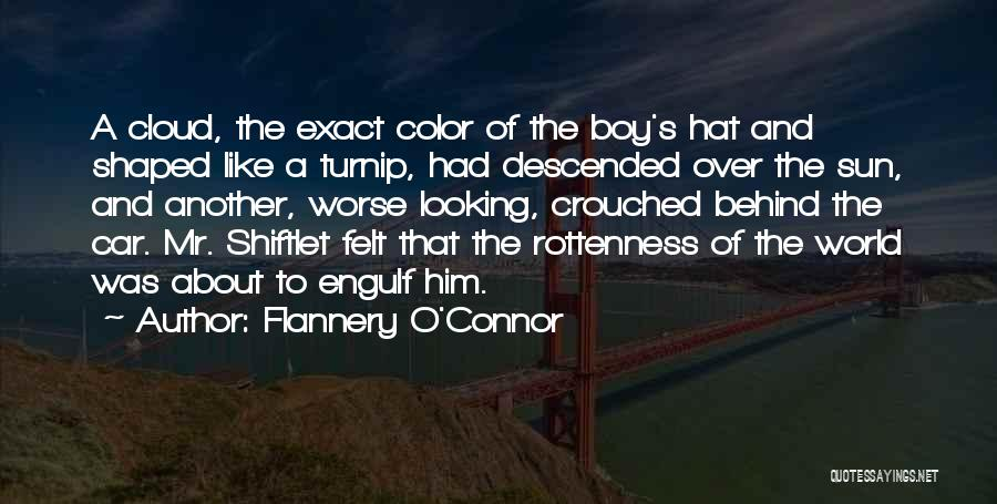 Sun Cloud Quotes By Flannery O'Connor