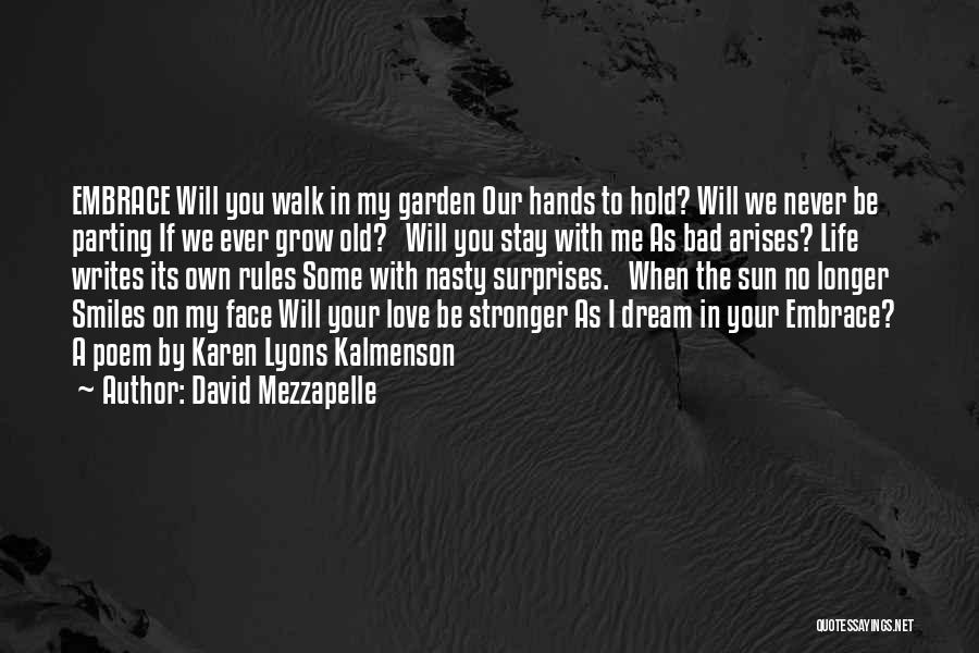 Sun On My Face Quotes By David Mezzapelle