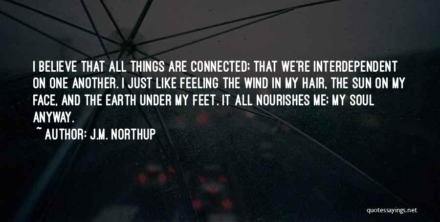 Sun On My Face Quotes By J.M. Northup