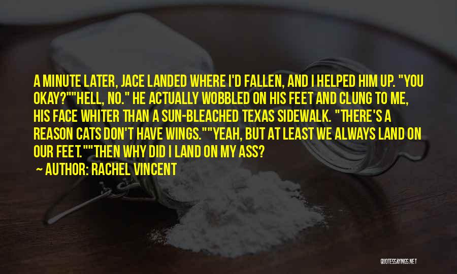 Sun On My Face Quotes By Rachel Vincent