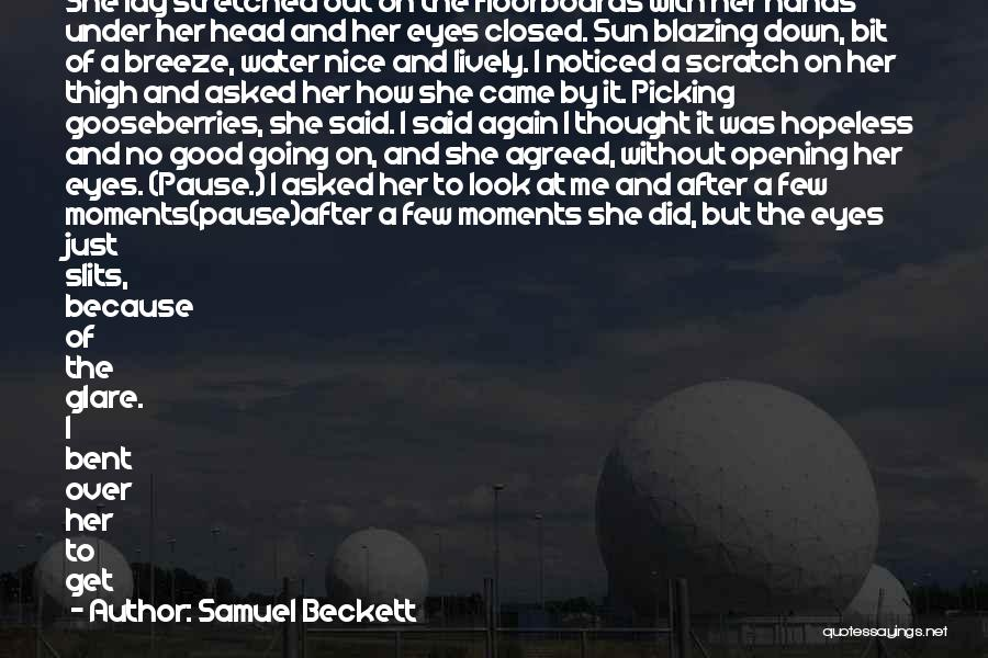 Sun On My Face Quotes By Samuel Beckett