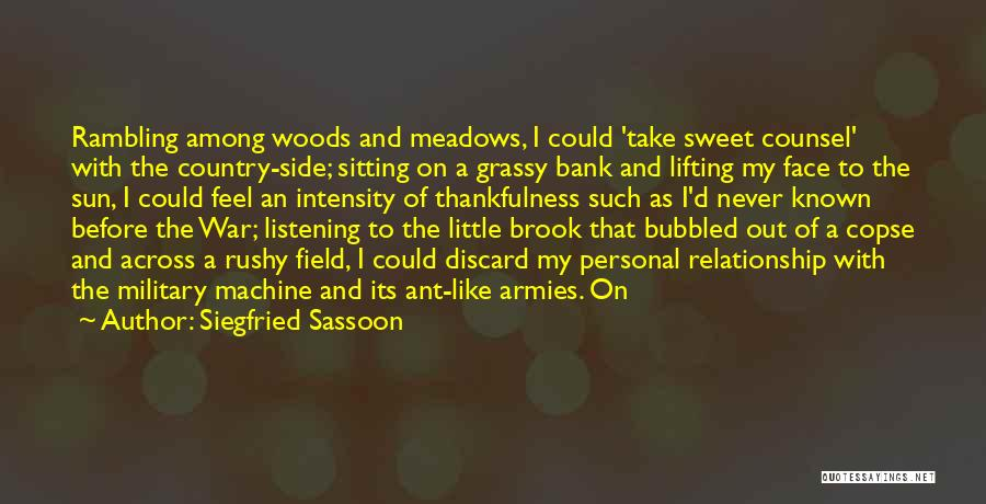 Sun On My Face Quotes By Siegfried Sassoon