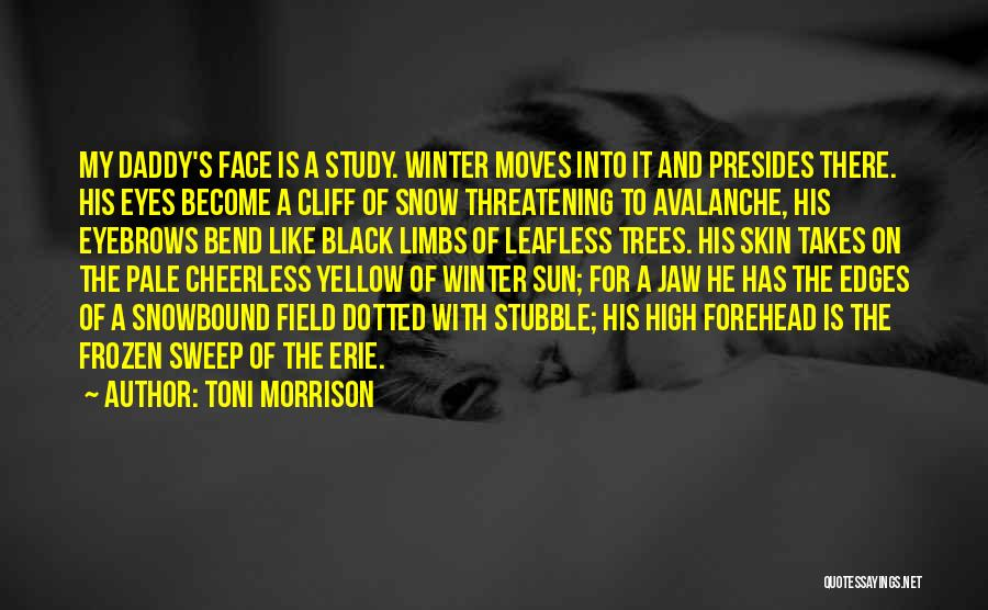 Sun On My Face Quotes By Toni Morrison