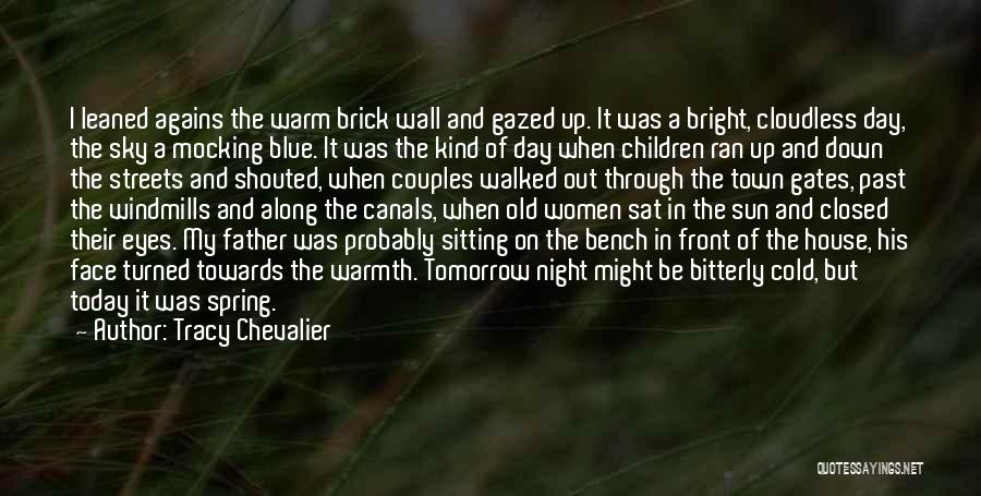 Sun On My Face Quotes By Tracy Chevalier