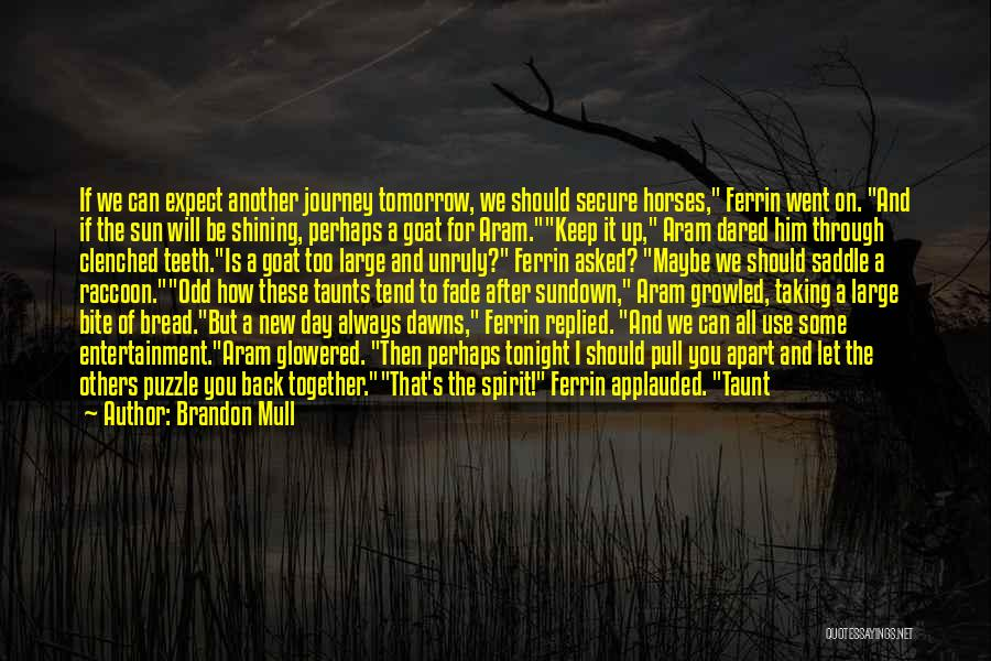 Sun Shining Day Quotes By Brandon Mull
