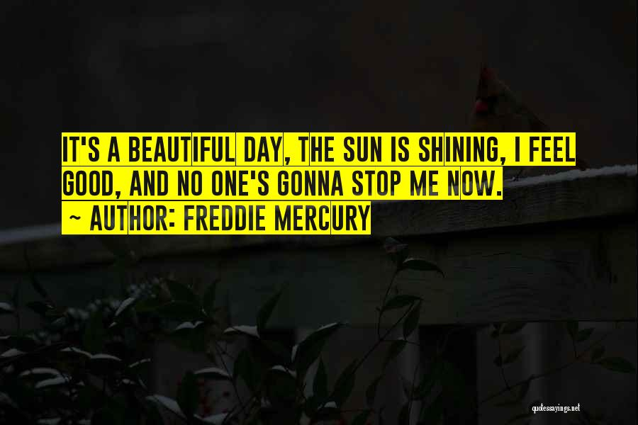 Sun Shining Day Quotes By Freddie Mercury