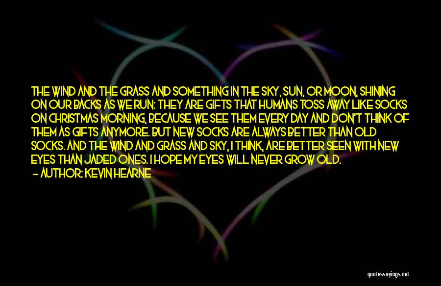 Sun Shining Day Quotes By Kevin Hearne