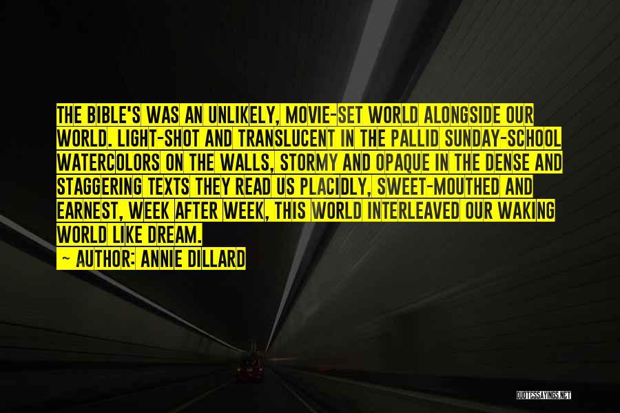 Sunday School Quotes By Annie Dillard