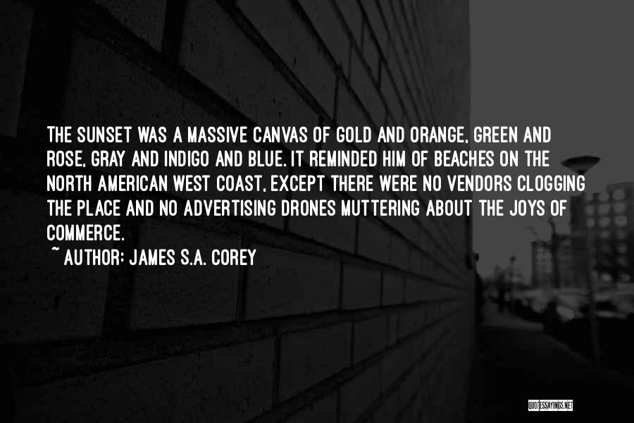 Sunset On The Beach Quotes By James S.A. Corey