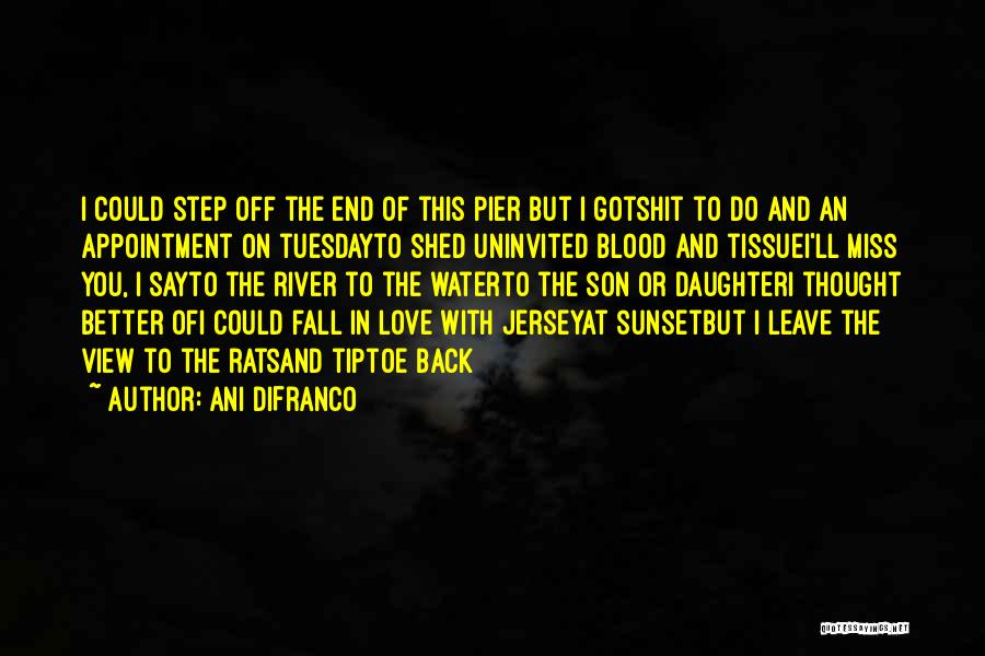 Sunset Over Water Quotes By Ani DiFranco