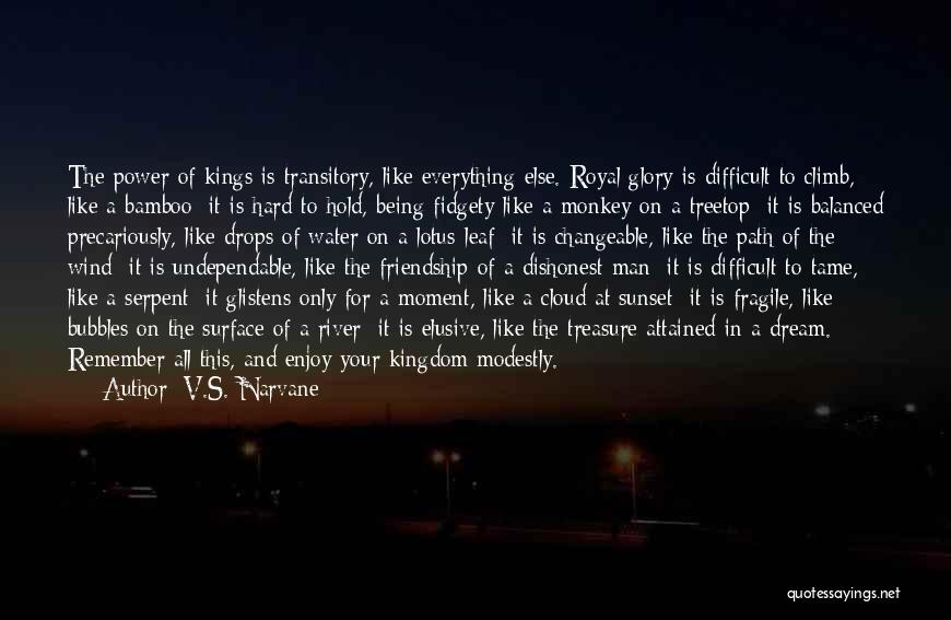 Sunset Over Water Quotes By V.S. Narvane