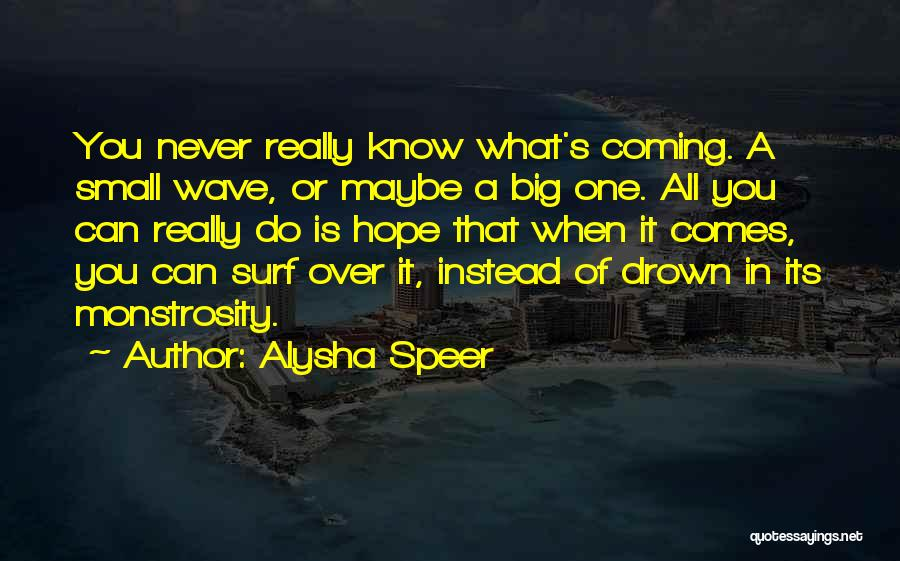 Surfing Is A Way Of Life Quotes By Alysha Speer