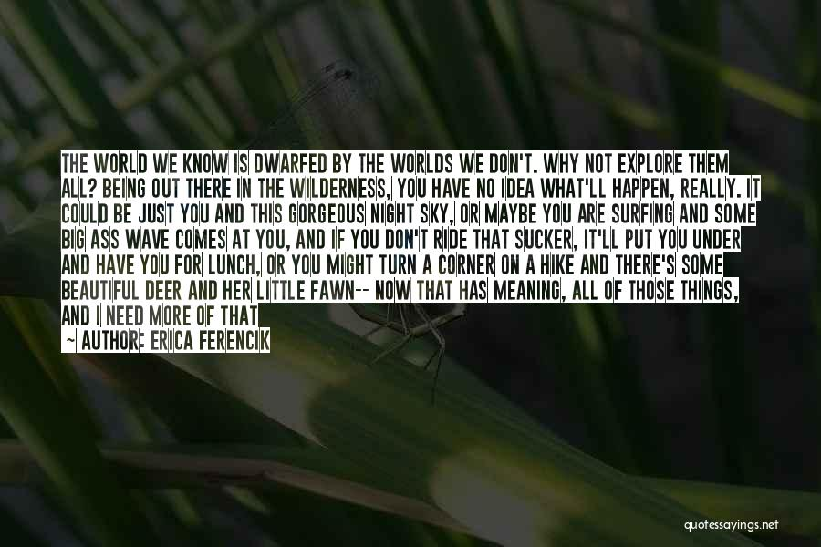 Surfing Is A Way Of Life Quotes By Erica Ferencik