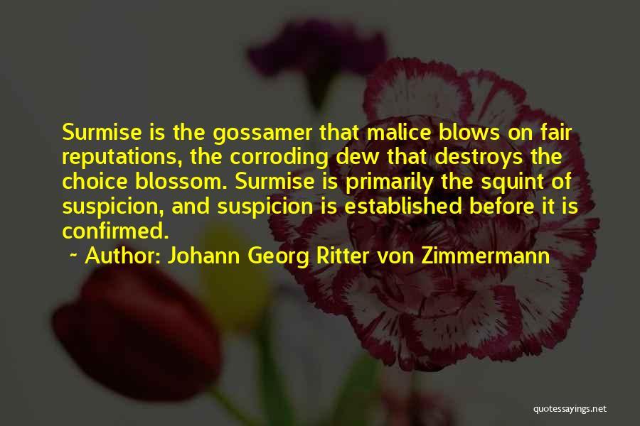 Surmise Quotes By Johann Georg Ritter Von Zimmermann