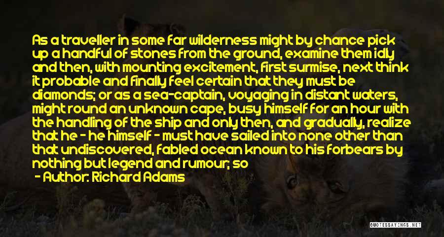 Surmise Quotes By Richard Adams